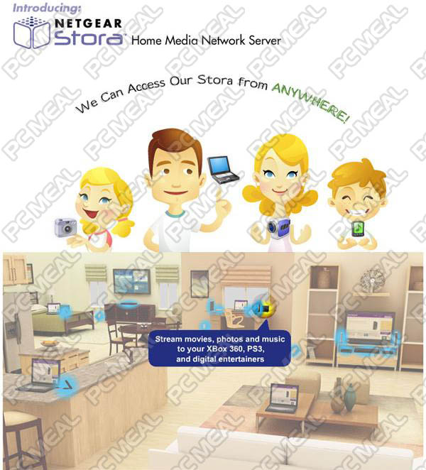 http://www.pcmeal.com/ebay/Netgear/MS2110/STORA_60002.JPG